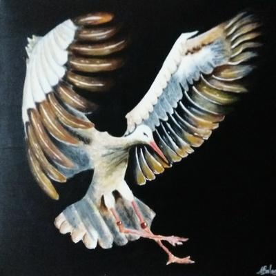 © Bird