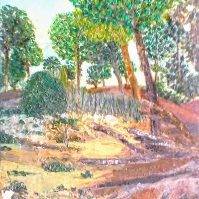 Forêt provençale près de Cassis