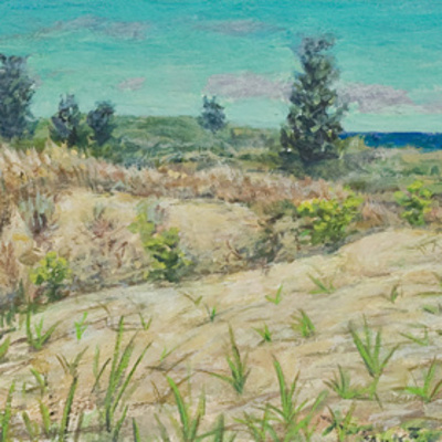 Michigan City Dunes