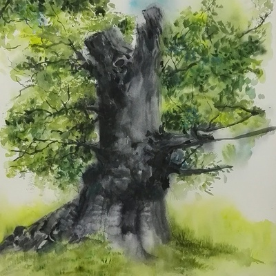 Sapless tree