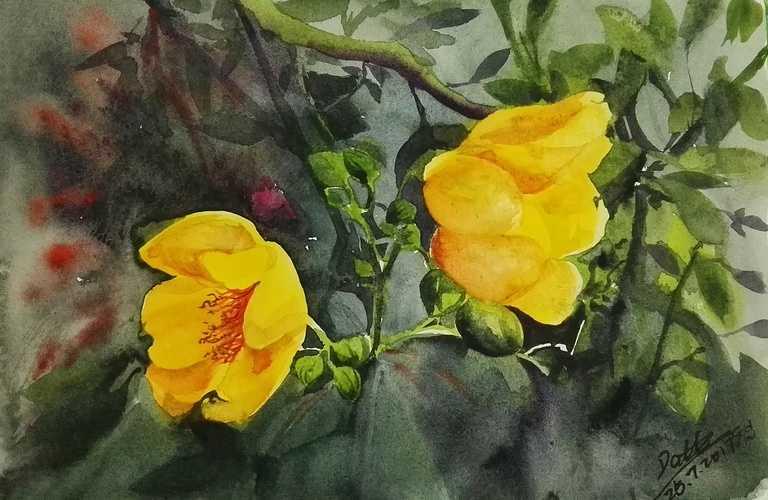 Watercolor flower 0