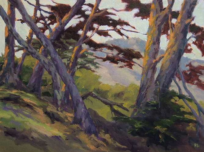 Grand Cypress 0