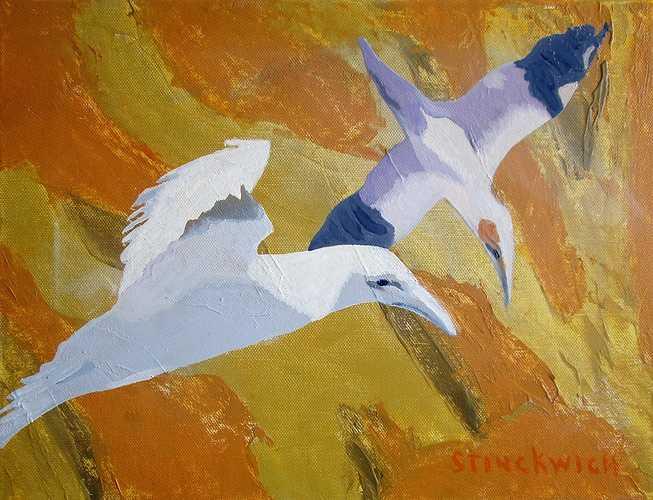 Evasion rupestre ''les oiseaux'' 0