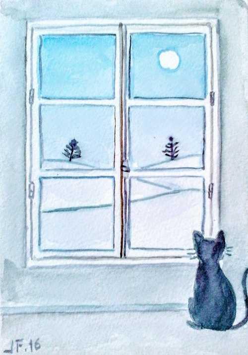 Chat à la fenêtre 0