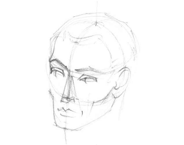 exemple de construction du visage d'homme adulte 0