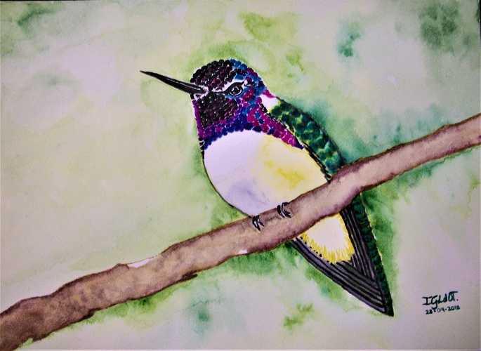 Hummingbirds 5, by Georgina Luna 0