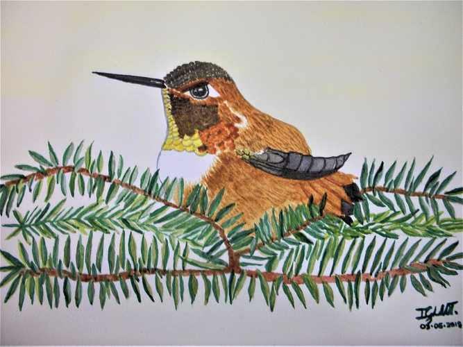 Hummingbirds 7, by Georgina Luna 0