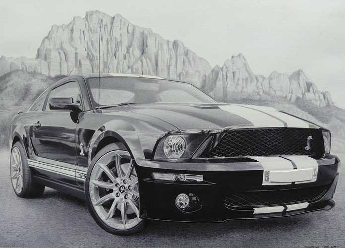 Shelby GT500 0