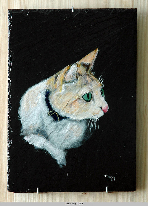 The cat 0