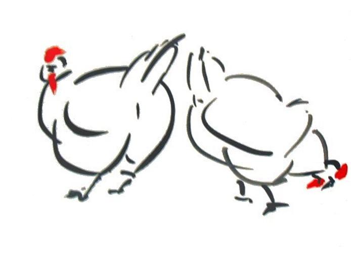 Poules 0