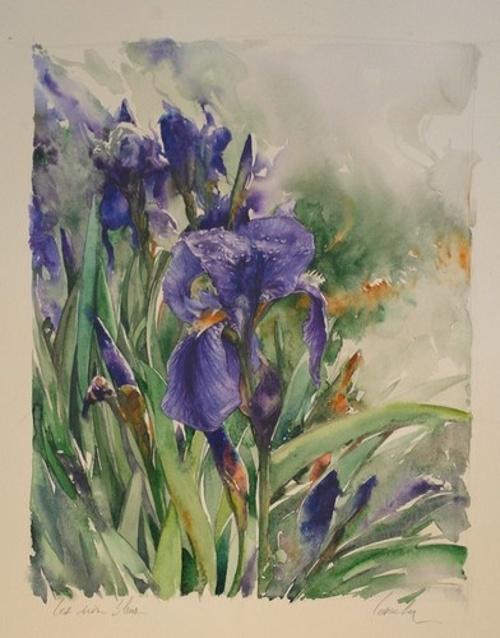 Les iris bleus 0