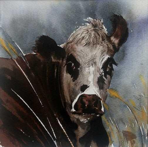Vache dans le vent 0