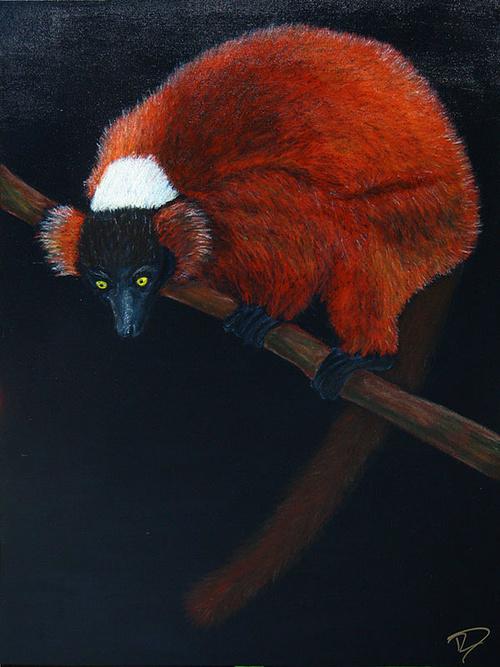 lemurien 0