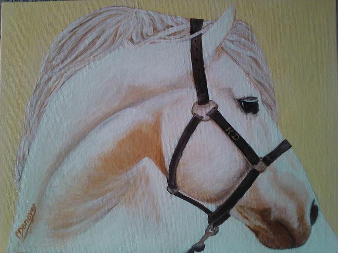 le cheval 0