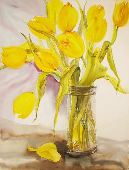 tulipes jaunes 0