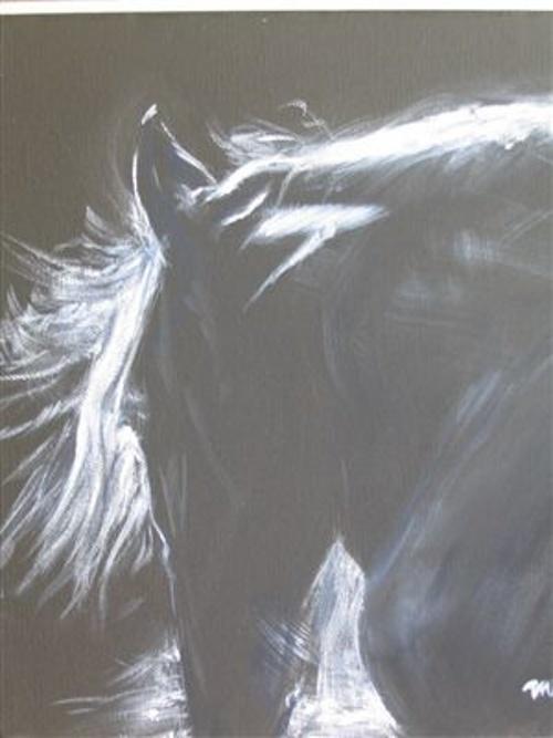 Cheval noir et blanc 0