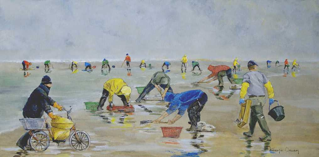 Pêcheurs de coques en baie de Somme 0