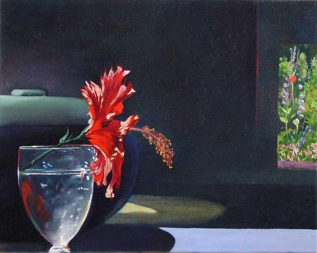 Hibiscus 0