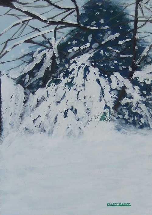 Villeurbanne,hiver 2010. 0