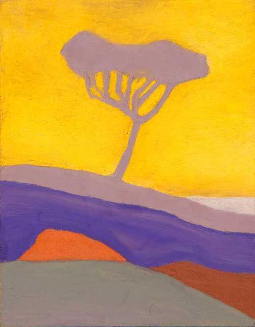 Nature arbreausoleil
