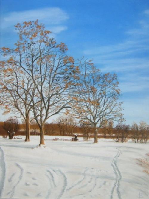 Arbres en hiver 0