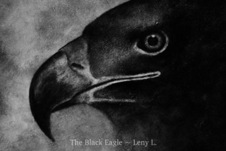 THE BLACK EAGLE - L''AIGLE NOIR 0