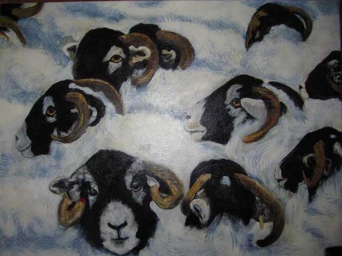 Nuages de Moutons 0