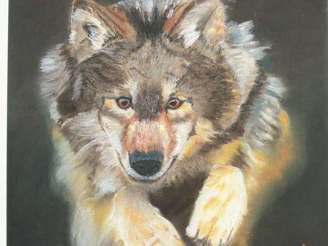 Loup 0
