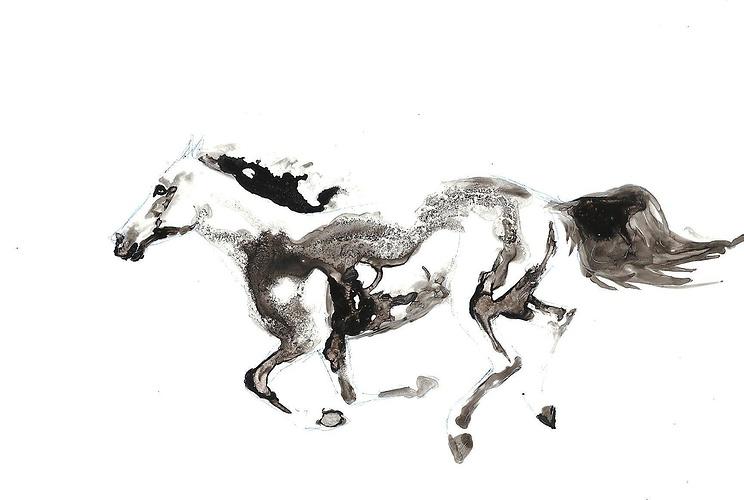 cheval au galop 0