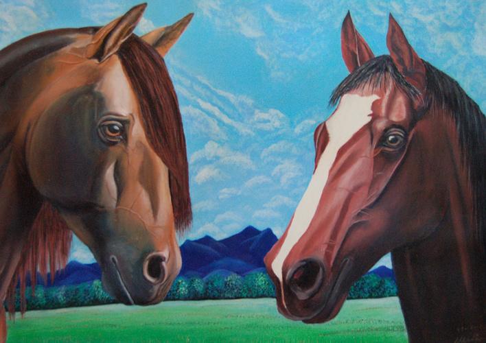 cavalli 0