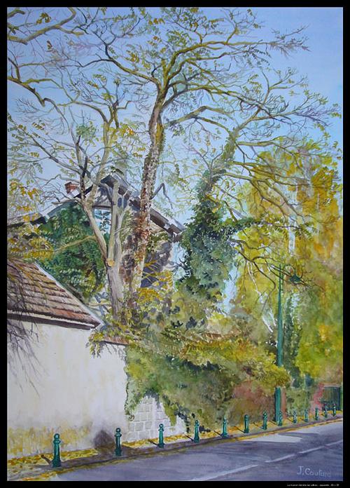 La maison derrière les arbres 0