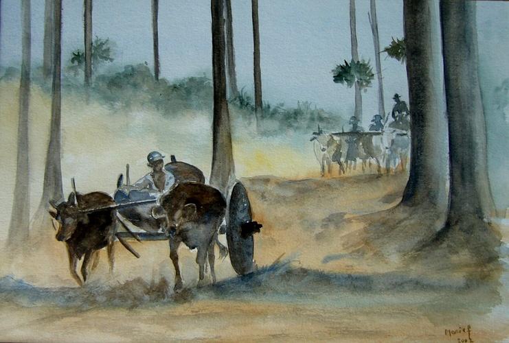 chars à boeufs Birmanie 0