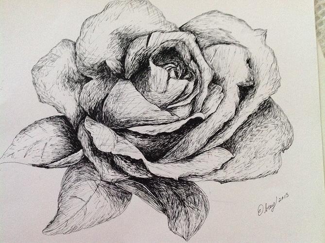 Une rose 0