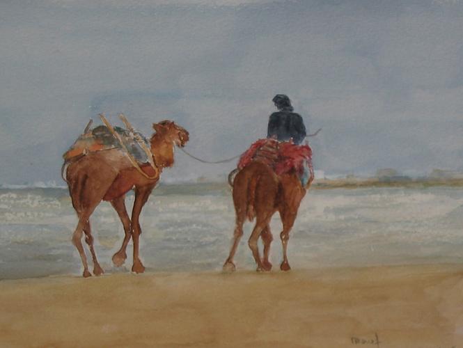plage d' essaouira 0