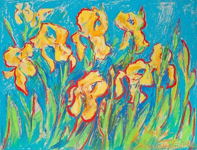 ''Sunny Irises'' 0
