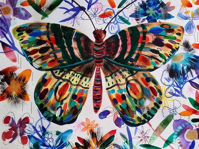 Papillon 0
