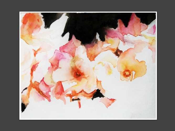 Petals (Roses) 0