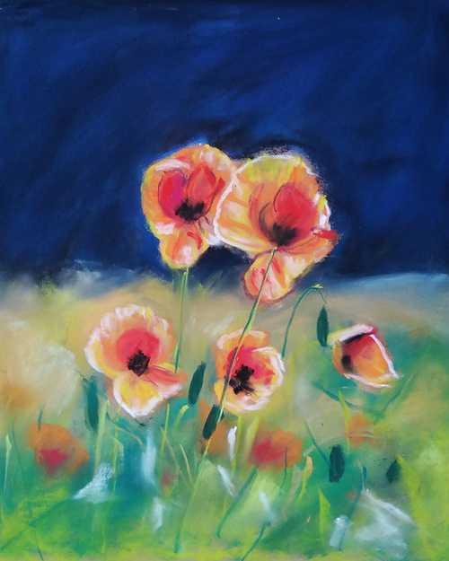 Poppies 0