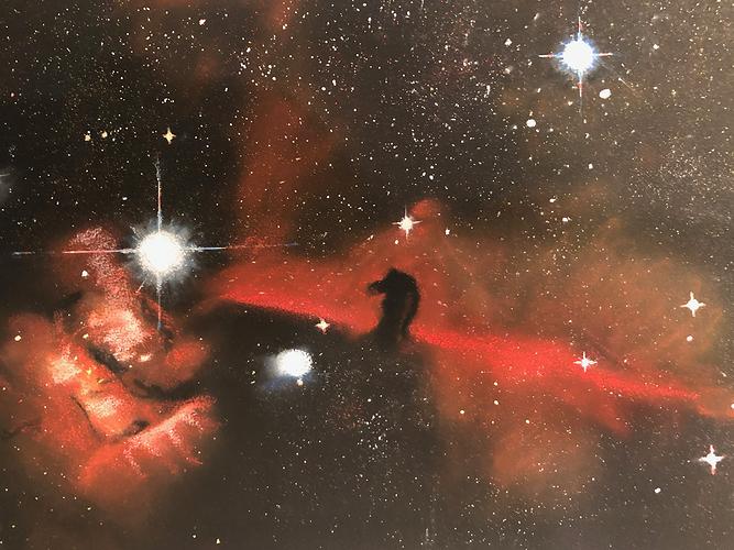 The Horse Head Nebula 0