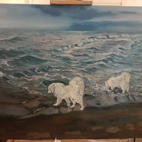 Black sea,Kilios 0