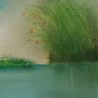 brume sur l eau