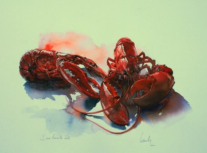 Deux homards cuits 0