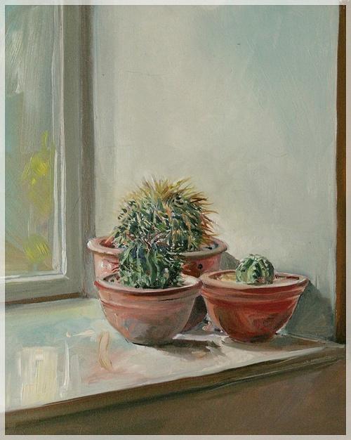 3 cactus 0