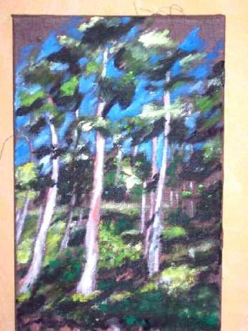 les pins 0