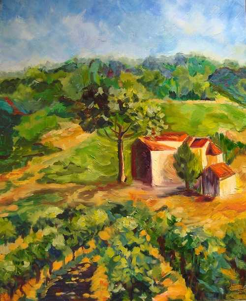 Ferme en Provence 0