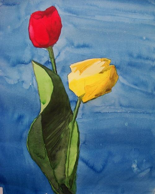 Tulipes 0