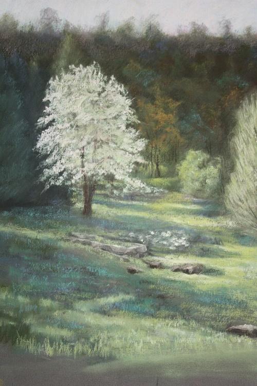 L'arbre blanc 0