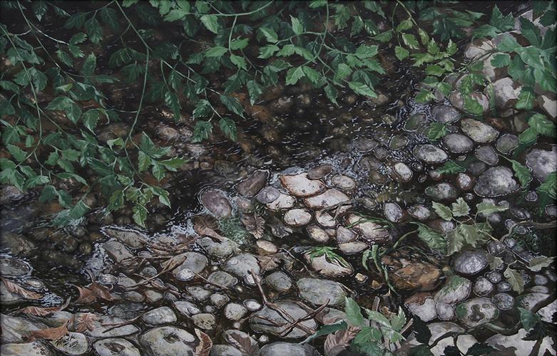 Feuilles dans la rivière 0
