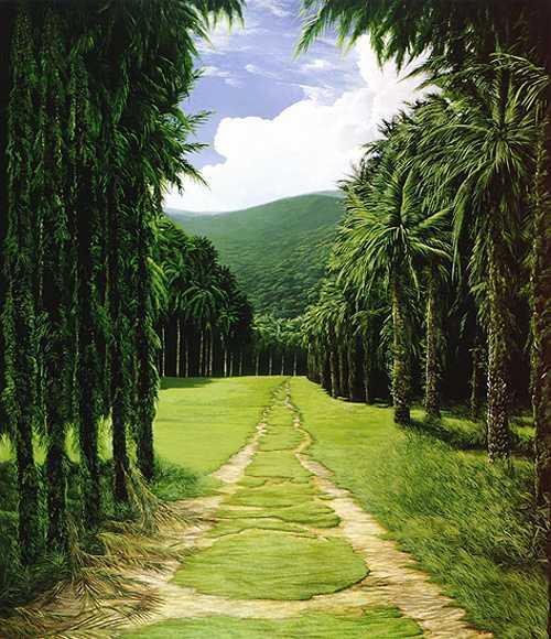 route entre les palmiers 0