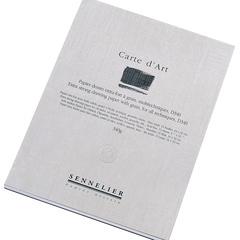 albums carte d art (d340)